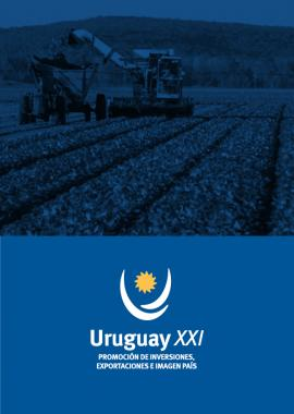 Agribusiness Report