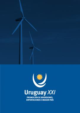 Renewable Energies Report